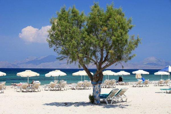 Strand von Mastichári mit Liegen und Sonnenschirmen für perfekte Badeferien im Sommer